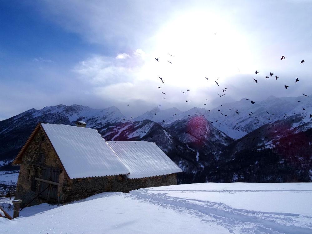 Alpes en hiver - marie havard photographie - les cris dans les mots