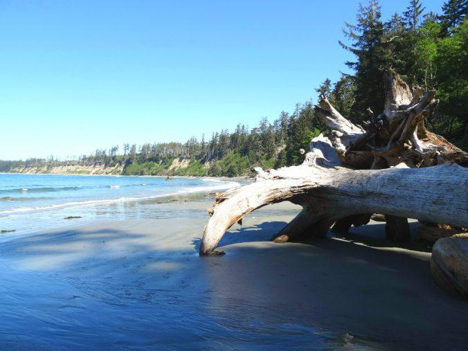 Halfmoon Bay Beach - Vancouver Island