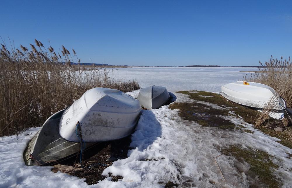 Réserve naturelle du lac Tåkern