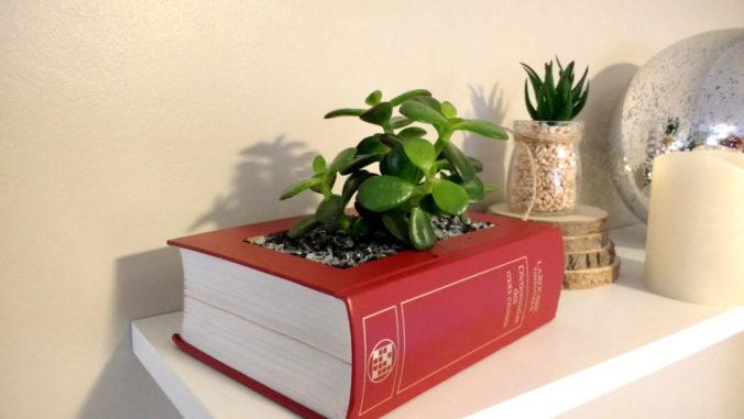 Id e cadeau le livre pot de fleur fait maison marie havard - Idee cadeau nouvelle maison ...