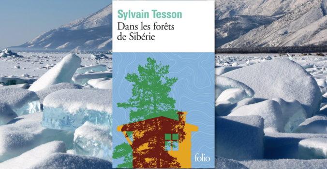 Livre : dans les forêts de sibérie, sylvain tesson